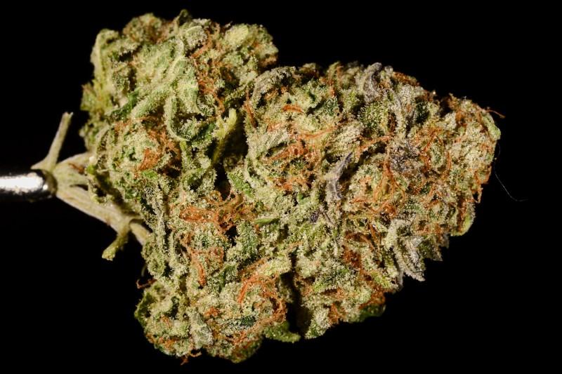 Cannabis super strains: Death Star