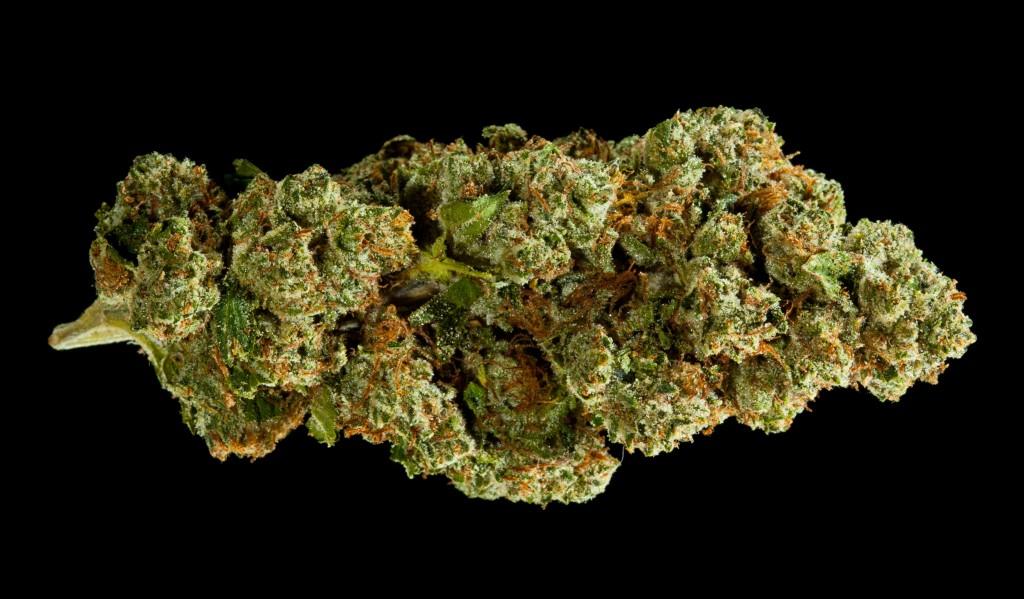 Cannabis crossbreeding: Nexus OG