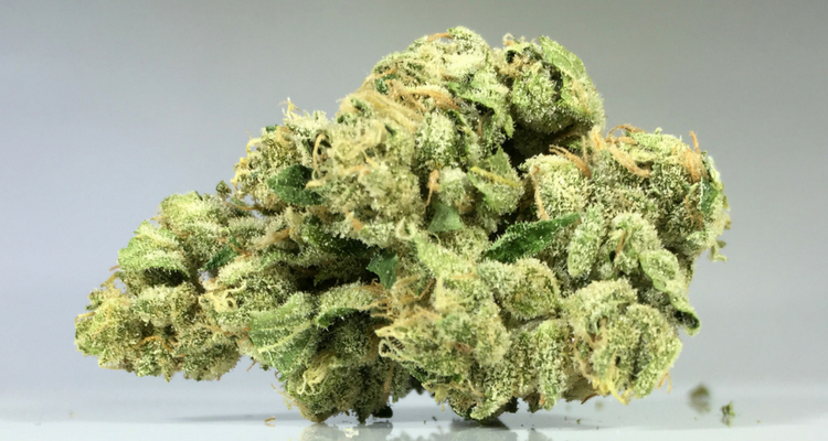 blog   the most popular weed strains in california right
