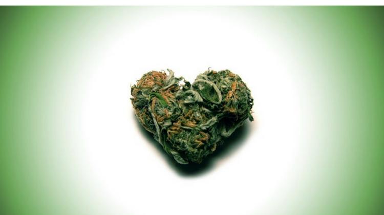 GreenRush | Weed ettiquette