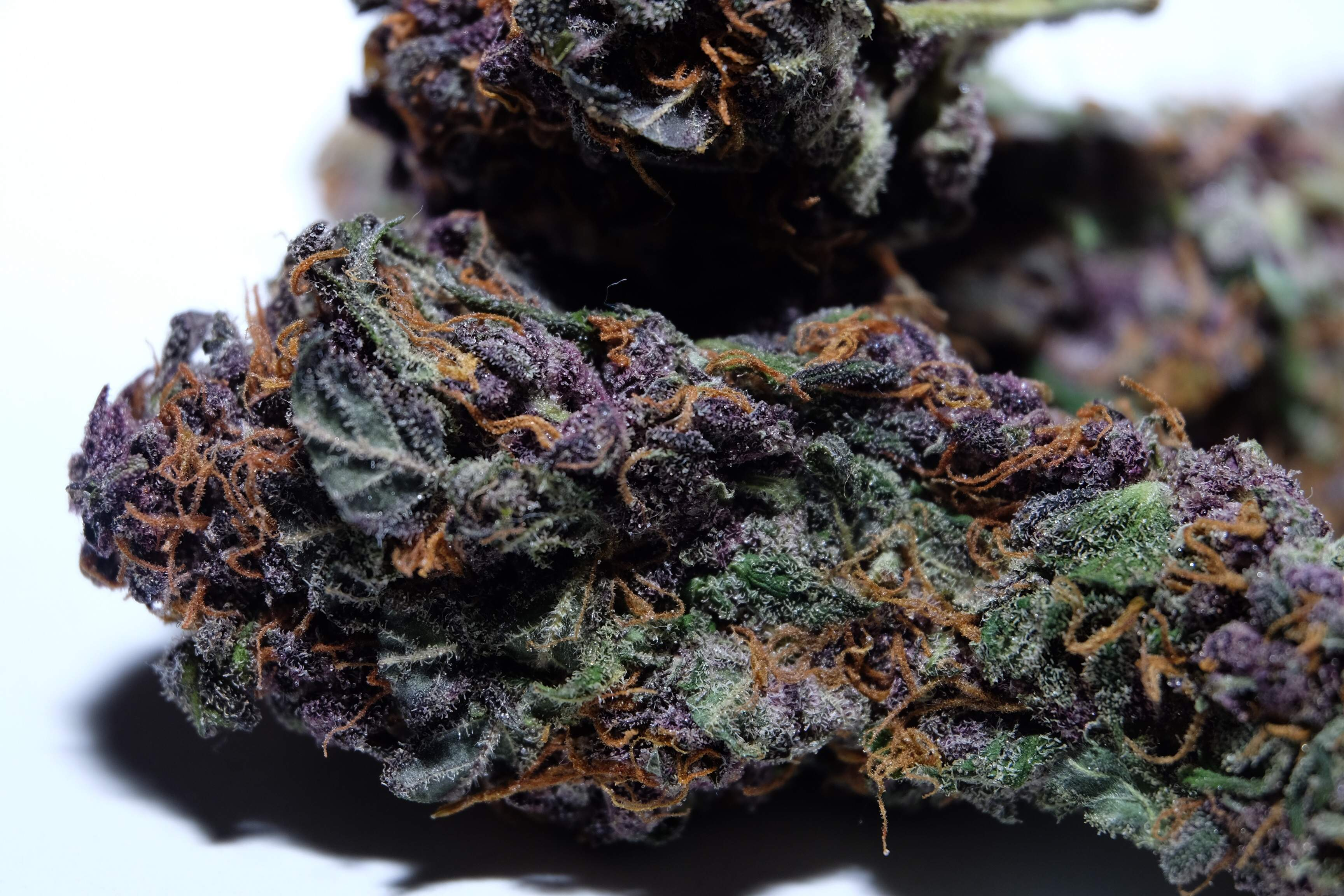 strains to stimulate your appetite