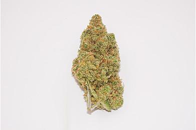 cannabis and summer