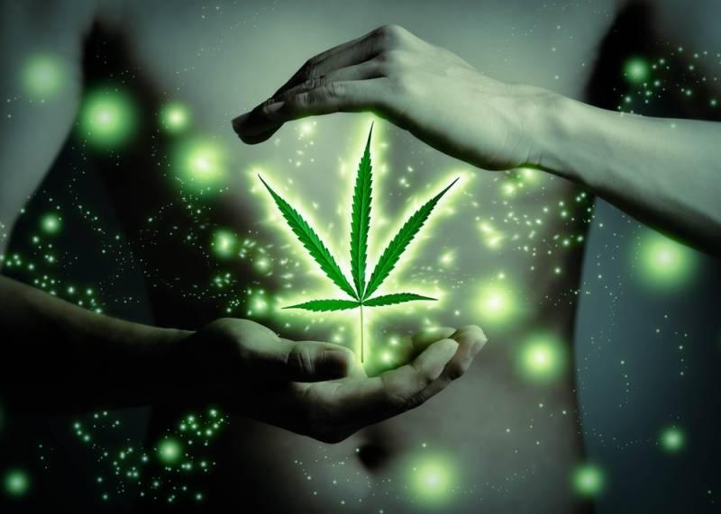 cannabis flavonoids