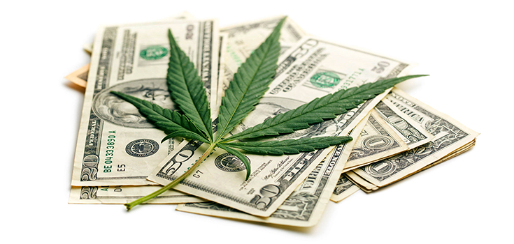 colorado's marijuana sales