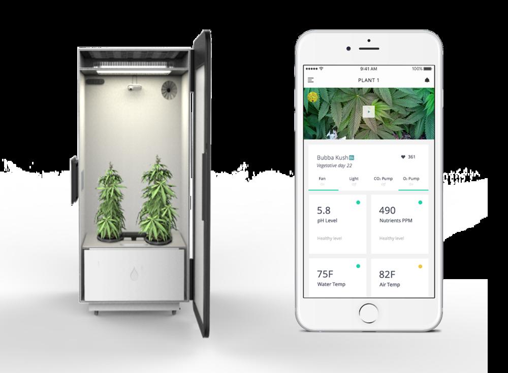 weed gadgets