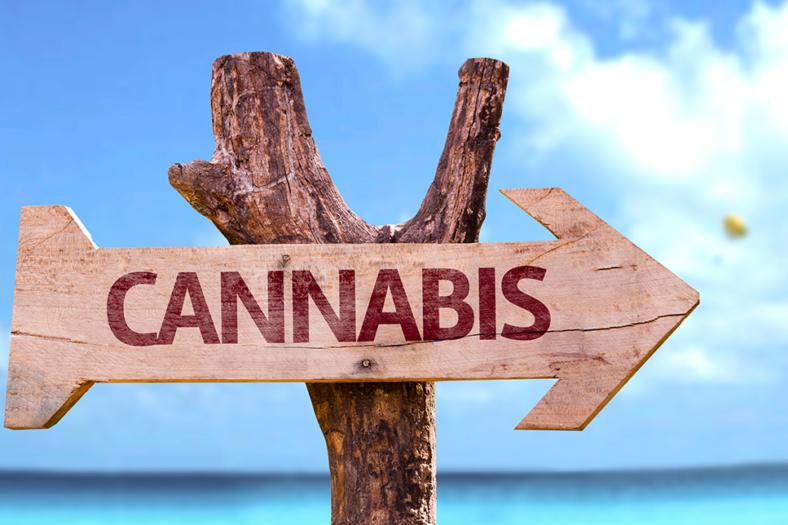 cannabis vacations
