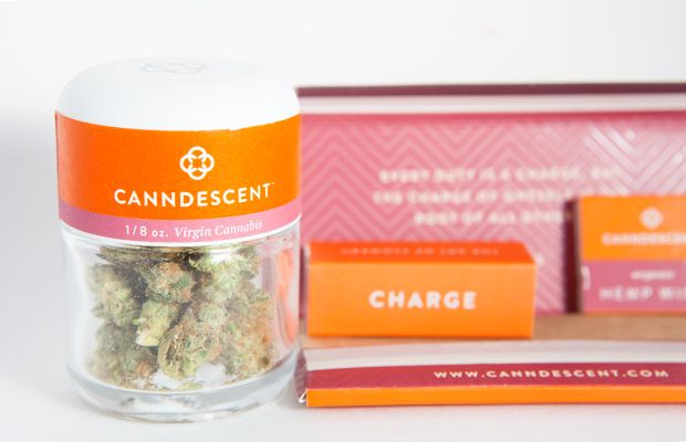 labor day cannabis