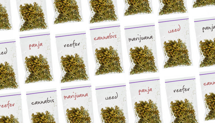 other names for cannabis