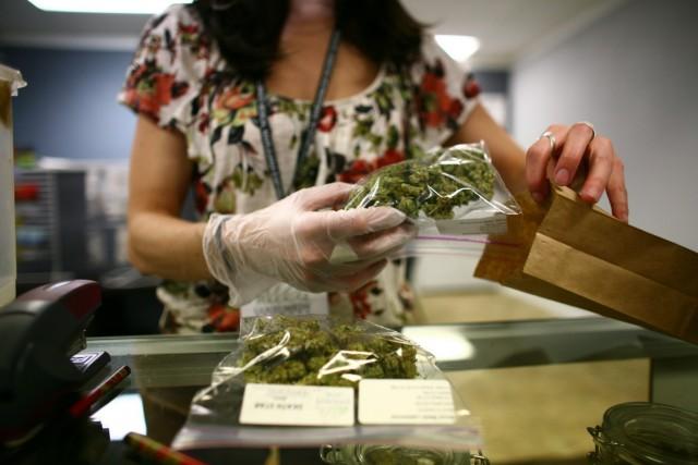 High CBD cannabis strains: Dance World