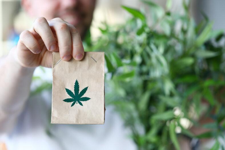cannabis delivery blog header