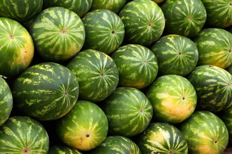 watermelon bong